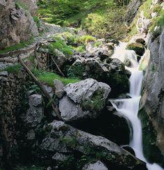 Foces de El Río Pino (Aller) paisaje de una ruta muy interesante // Foces del El Río Pino (Aller), landscape of a very intereseting route