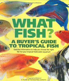 What Fish? A Buyer's Guide to Tropical Fish