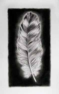 """Large Charcoal Feather I Drawing Large Charcoal Feather I Drawing This is a signed original fine art drawing by Washington state artist Kathleen Ney. Black and white with a touch of brown. A skillfully rendered art piece for your home, this piece would be wonderful in a grouping! The paper size is 15"""" x 22.5"""", the image size is appx. 9"""" x 16"""" on heavy Canson Edition Archival paper with 2 deckled edges. On a gorgeous 100% cotton, acid free paper, this drawing is float mounted and fr.."""