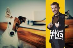 Czym jest dog grooming i jak rozwija się w Polsce? To wymysł właściciela czy potrzeba psa? O ciekawym zawodzie i nietuzinkowej pasji oczami profesjonalistki