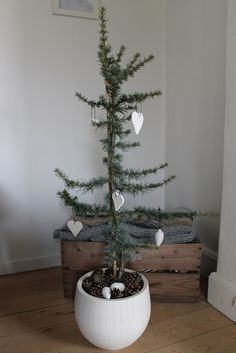 Christmas Decorations Dinner Table, Christmas Lanterns, Christmas Centerpieces, Alternative Christmas Tree, Simple Christmas, Christmas Diy, Xmas, Christmas Inspiration, Advent