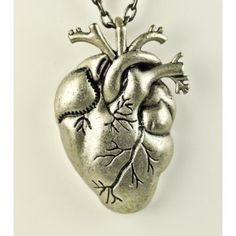 Anatomical Heart Necklace $11.00
