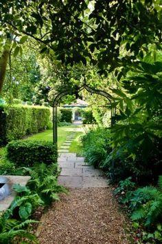By Lynne.London Woodland Garden., My Garden (TW9)
