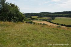 Pewley Down Nature Reserve in Guildford, an area of chalk grassland with far reaching views. Big Butterfly, Nature Reserve, Days Out, Surrey, Beautiful World, Summertime, Things To Do, Places To Visit, Wildlife