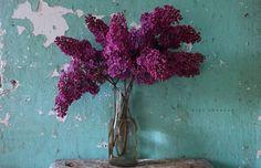 Οδυσσέας Ελύτης - «Έτσι μιλώ γιά σένα καί γιά μένα..» Kiss Art, Color Inspiration, Colours, Photography, Painting, Image, Tooth, Alphabet, Flowers