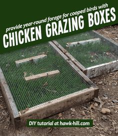 Chicken Coop Upgrade: Astroturf Lined Nesting Boxes - Hawk Hill