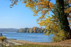 Herbst, Landschaft, Chiemsee, See, Wasser, Natur, Ferne
