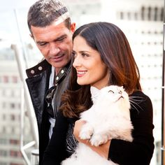 r Cat & Salma Hayek & Antonio Banderas Crazy Cat Lady, Crazy Cats, I Love Cats, Cool Cats, Celebrities With Cats, Photoshop Celebrities, Smoking Celebrities, Hollywood Celebrities, Cat Ideas