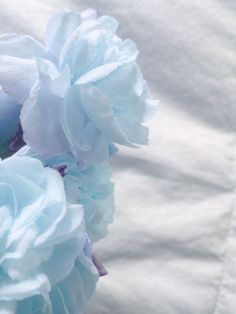 I do believe your galaxy — Jungkook blue aesthetics 💙 Jungkook is so pretty. Light Blue Aesthetic, Blue Aesthetic Pastel, Aesthetic Colors, Hawke Dragon Age, Everything Is Blue, Alice Blue, Bleu Pastel, Himmelblau, Blue Wallpapers