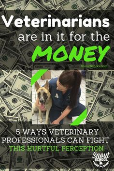 "Many a veterinarian or vet tech have heard someone say, ""You guys are just in it for the money!"" It's time for veterinary professionals to clear up that nasty rumor: http://www.snoutschool.com/social-media-vs-veterinarians-just-want-money-epidemic/"