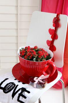 Kalanchoë Valentijn