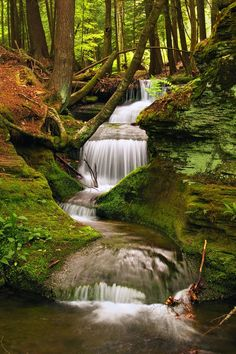Waterfall, Potter County, Pennsylvania photo via wiki
