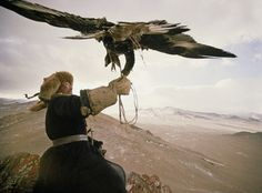 Hunting with eagles on horseback is an ancient tradition in Central Asia