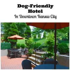 Dog friendly hotel in downtown Kansas City- Best Western Plus Seville Plaza Hotel review. #ad