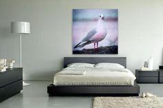 witte meeuw op canvas, aluminium (dibond), Xzpozer of poster print.