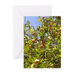 ORANGES AND SKY Greeting Cards