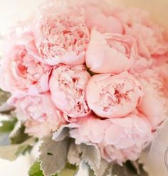 Baby Pink Peonies With Dusty Miller Beautiful Blush Wedding Flowers