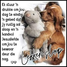Good Night Wishes, Good Night Quotes, Special Friend Quotes, Evening Greetings, Goeie Nag, Afrikaans Quotes, Sweet Dreams, Sayings, Words