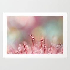 Rainbow Cactus II Art Print by Sharon Johnstone - $17.00