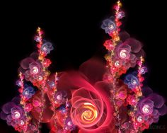 Pink Rose Fractal. I have this one as my background. :)