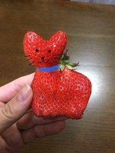 むぎママさん提供 by Mugi Mama Weird Fruit, Funny Fruit, Weird Food, Fruit And Veg, Fruits And Veggies, Cute Deadpool, Strawberry Pictures, Photo Fruit, Funny Vegetables
