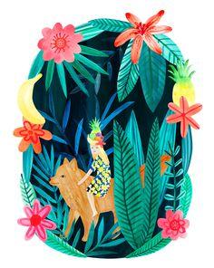 Emily Nelson Illustrator Tropical Adventure