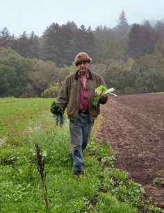 Briefing: The Farm-to-Fork Movement