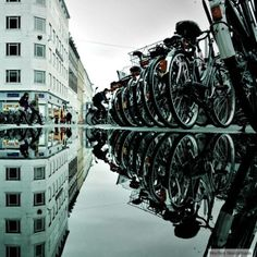 Excellent use of water reflection.