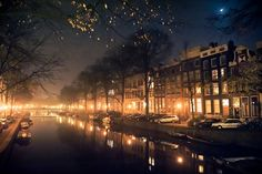 """""""Amsterdam by Night"""" by Lambert Wolterbeek Muller. - Great use of a long exposure has enhanced the effect of the mist, crisply silhouetting the trees and also taking on the colour of the warm street lights and the cool moonlight."""
