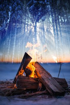Wintery Wood Fire Amazing Royalty-Free Pictures at Great Prices. We hope you'll enjoy them as much as we do. Come and see them today. Pixel Photo, Stock Imagery, Winter Images, Image Categories, Best Stocks, Montages, Royalty Free Pictures, Come And See, Daily Photo