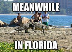Moving to Florida or the Carolinas... decisions!