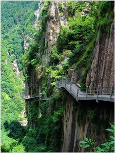 Cliffside Path, Huashan, China !!