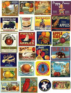 "old food labels. My favourite is the ""pussy apples"" label! haha"