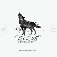 Welcome to Jupiter Street Designs!  I am excited to present my line of pre-made logos. Premade logos are a great, inexpensive way to add a professional touch to your business. Great for photographers, bloggers, etsy sellers, and more!  ALL MY LOGOS COME WITH FREE FONT CHANGES. Any font you see in my shop, I can try for you :)  This logo will be changed to reflect your company name upon purchase.  --OPTIONS--  1. LOGO ONLY - You will receive 3 files with your logo-  -JPG -PNG (transparent…