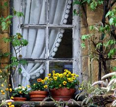 ysvoice:  | ♕ | French cottage window - Sarlat, Dordogne | by © Yvan LEMEUR