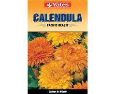 Yates Calendula