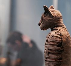 #mummy of a #cat #britishmuseum #london #londoner #londonlife #history #travelpics #travelblogger #pictureoftheday