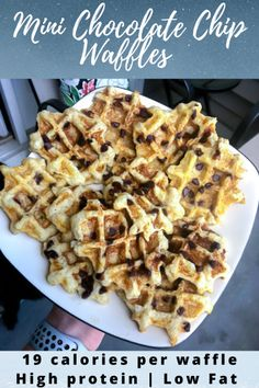Mini Chocolate Chip Waffles - Lauren Fit Foodie   1 large egg  ½ cup (120 g) egg whites  1 tsp butter or vanilla extract  1 cup (164g) riced cauliflower, cooked (I used Birdseye steamables)  1 tbsp (7g) coconut flour  ½ tbsp (7g) psyllium husk  1 tsp baking powder  12 tbsp zero-calorie sweetener  1 tbsp (14g) mini chocolate chips Chocolate Waffles, Mini Chocolate Chips, Psyllium Husk Recipe, Waffle Maker Recipes, Protein Waffles, Mini Chips, Vegetarian Chocolate, Coconut Flour, Waffles