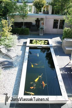 Backyard Plan, Small Backyard Pools, Backyard Water Feature, Ponds Backyard, Koi Pond Design, Garden Design, Fish Pond Gardens, Garden Pond, Garden Paths