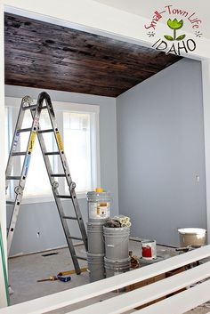 Love This Color Sherwin Williams North Star Living Dining Room Paint Choice