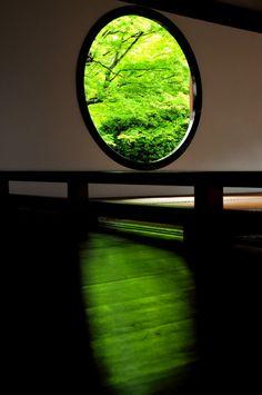 京都源光庵 Genko-an Temple, Kyoto, Japan  #Kyoto #Green #緑 #床みどり