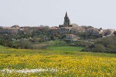 Ste-Félix-Lauragais à Midi-Pyrénées