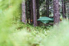 Die schönsten und speziellsten Schweizer Hotels, Herbergen und Hütten Das Hotel, Hotels, Terrarium, Plants, Miniature, Gardening, Amigurumi, Forest House, Swiss Guard