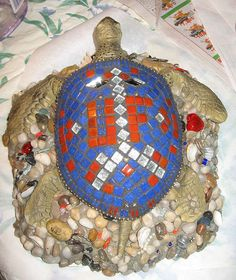 U of FL Turtle | Flickr - Photo Sharing!