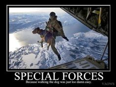 SPECIAL FORCES going to the Dogs! Oooorah!