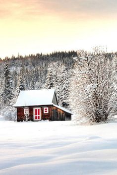 There's something about a cabin in winter...