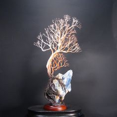 Wire Tree Of Life Ancient Grove metal tree by CrowsFeathers
