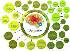 Educational infographic : Dyspraxie Plus Trouble, Mind Map Free, Education Positive, Brain Gym, Free Infographic, Primary School, Teaching, This Or That Questions, Studio