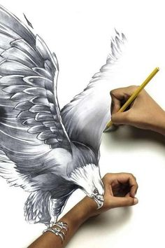 Eagle art Strength and power of eagle mounting real arm. Done with pencil and photography.