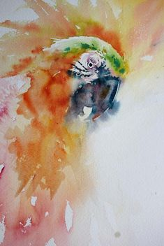 Watercolours With Life: Hello! Parrot in Watercolour 2016